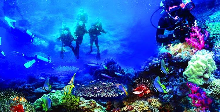 Objek Wisata Taman Nasional Bunaken Laut Terpopuler Pulau Kota Manado