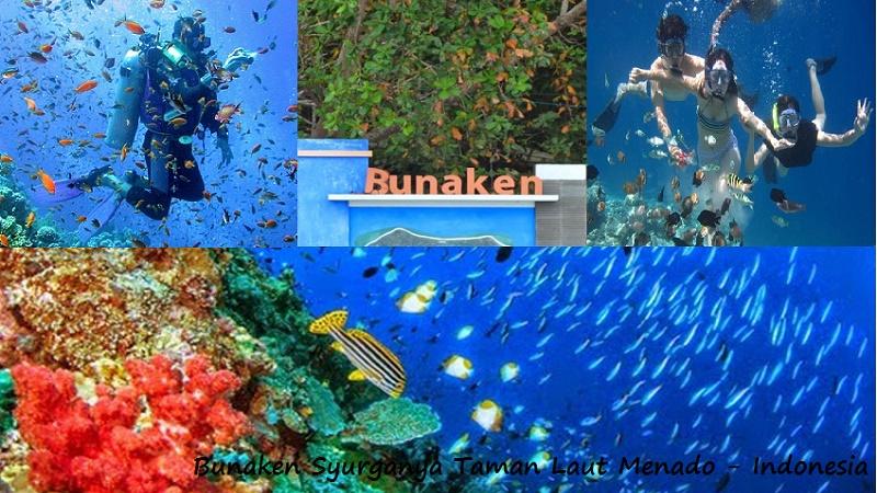 Pulau Bunaken Pesona Taman Bawah Laut Menado Indonesia Wisata Secara