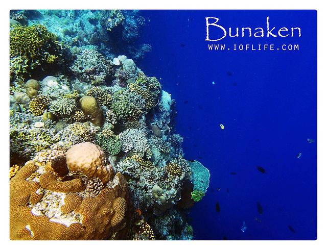 Taman Laut Siladen Manado Tua Bunaken Beautiful Palung Kota