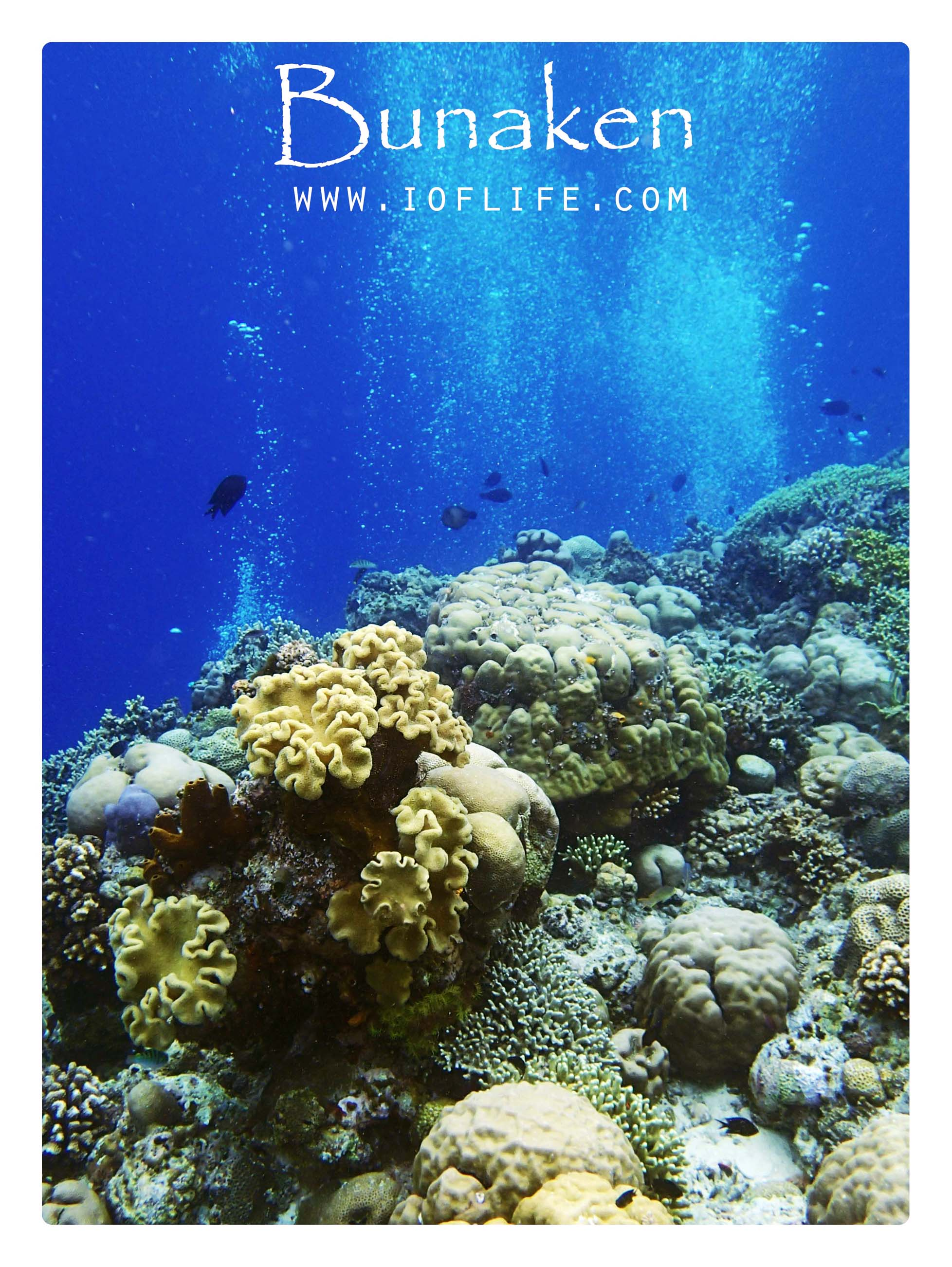Taman Laut Siladen Manado Tua Bunaken Kota
