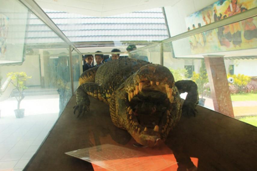 Museum Negeri Nusa Tenggara Barat Lombok Kamera Budaya Kota Mataram