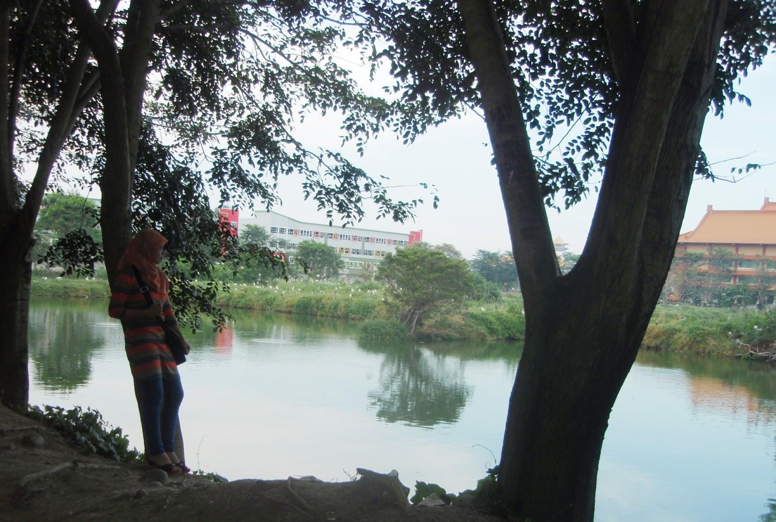 Cemara Asri Medan Wisata Murah Meriah Bangunan Megah Diatas Tidak