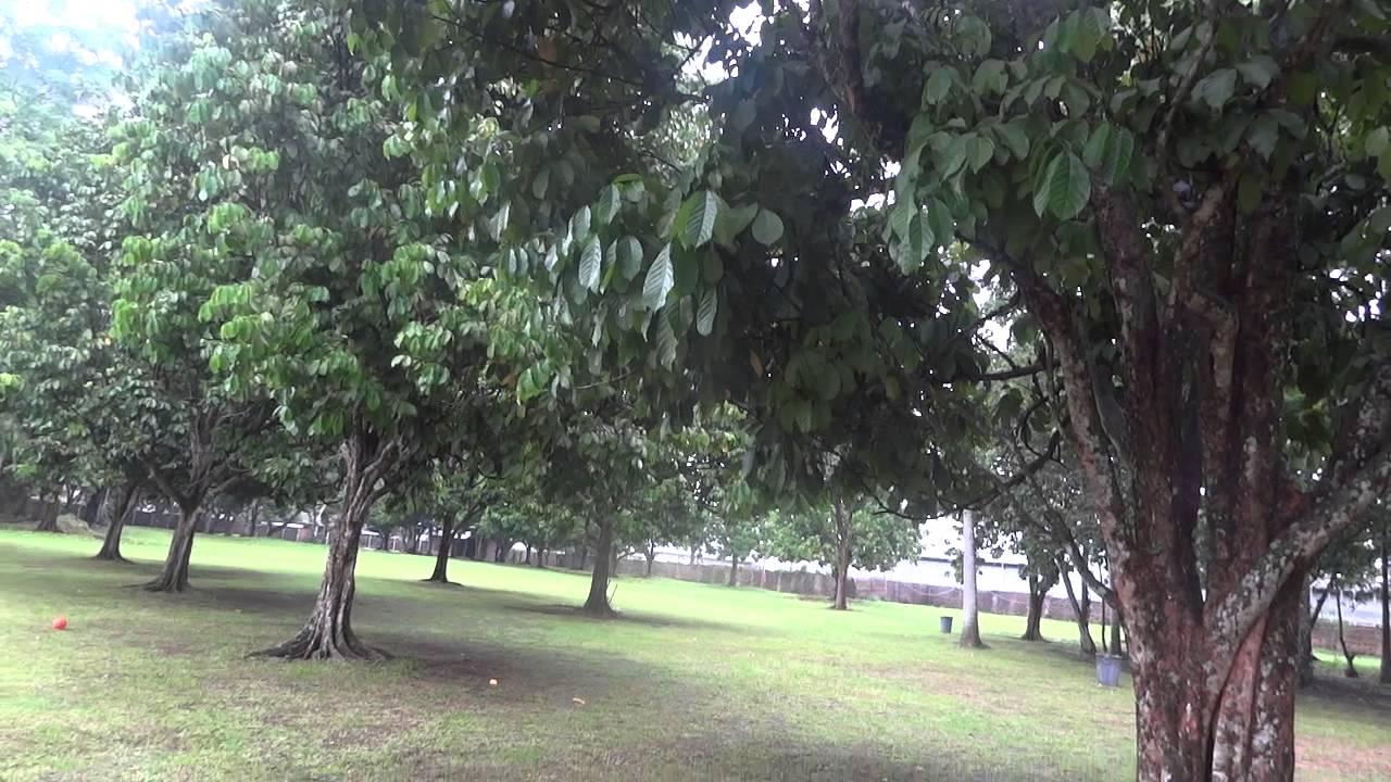 Kampung Ladang Outbound 1 7 Youtube Kota Medan