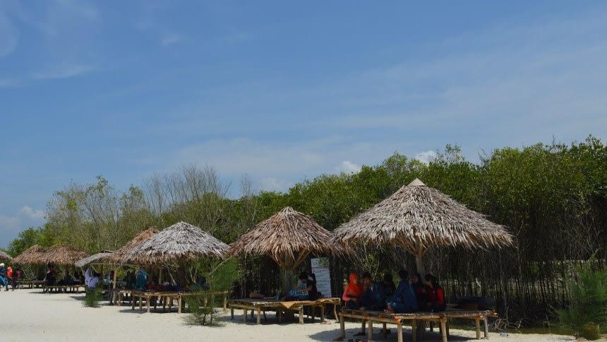 Pantai Mangrove Kampung Ladang Outbound Kota Medan