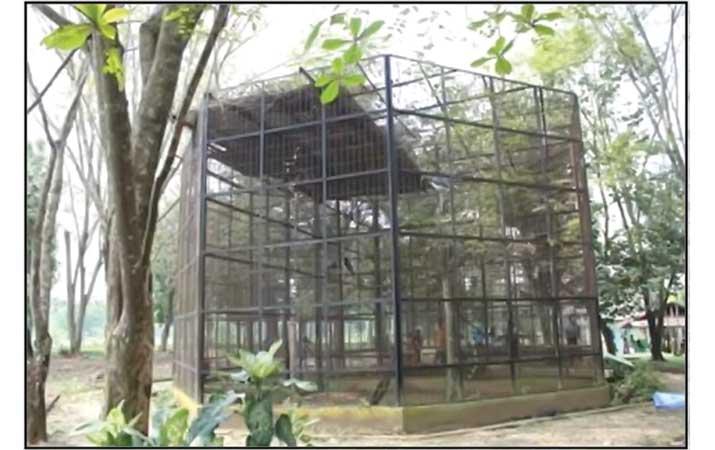 Berita Wisata Edukasi Medan Zoo Harian Analisa Kebun Binatang Kota
