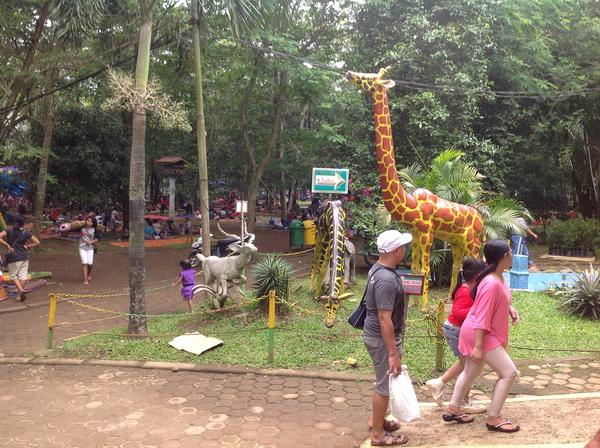 Butuh Biaya Besar Jadikan Kebun Binatang Medan Ragunan Kota