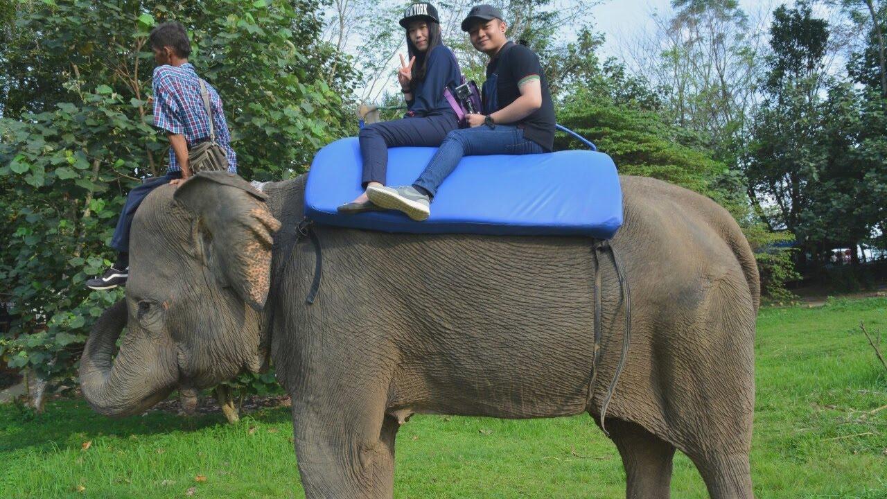 Jalan Kebun Binatang Medan Zoo Youtube Kota
