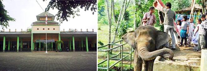 Kebun Binatang Medan Jejaki Kota