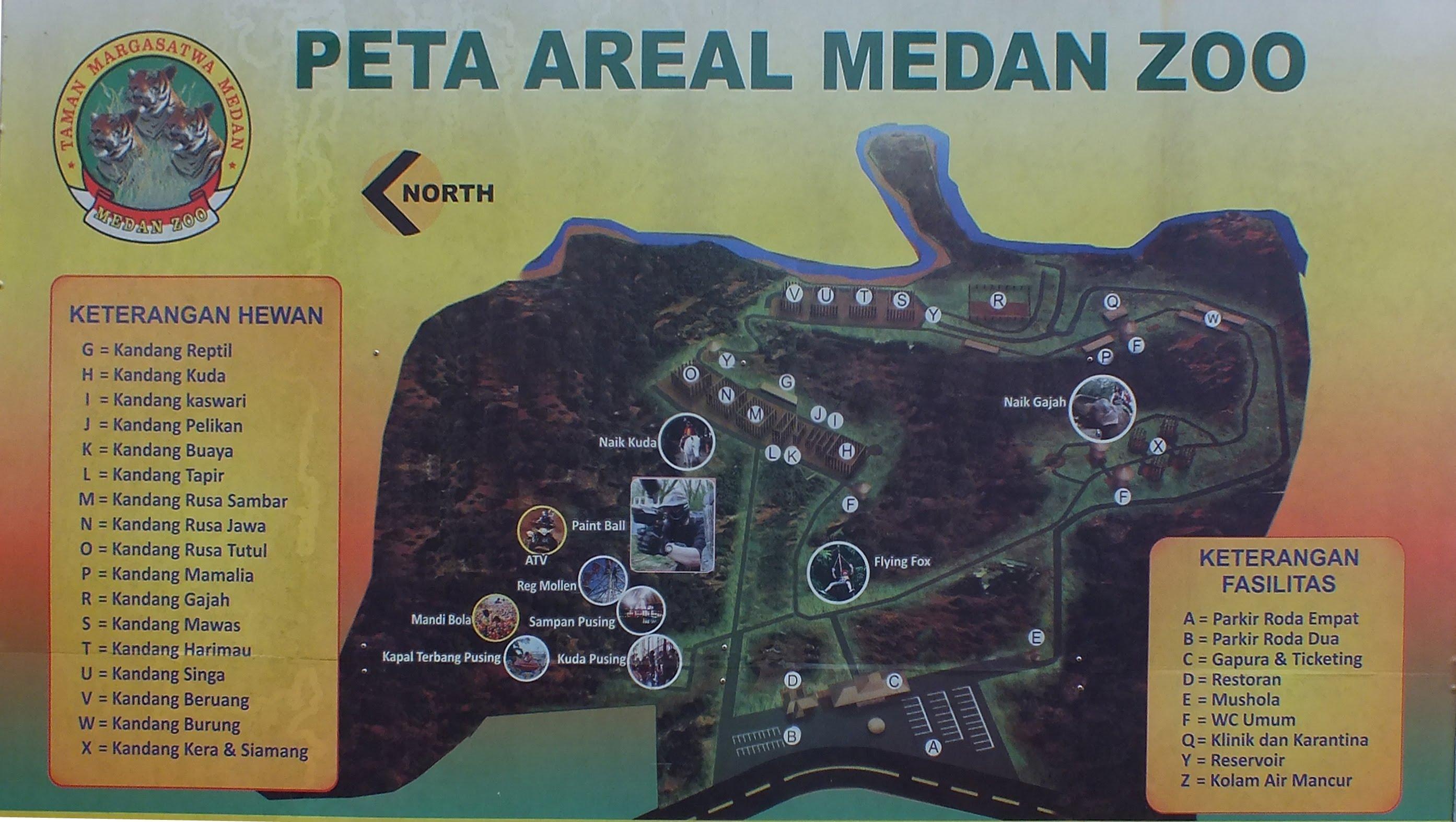 Kebun Binatang Medan Zoo Youtube Kota