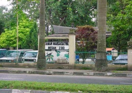 Kondisi Kebun Binatang Medan Zoo Memprihatinkan Kota