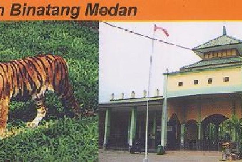 Liburan Tak Halangi Shalat Medan Zoo Dirikan Masjid Kebun Binatang