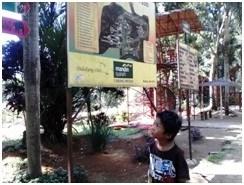 Luas Kebun Binatang Medan 30 Hektar Semedan Kota