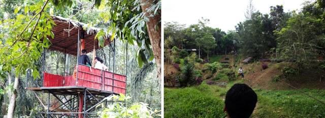 Luas Kebun Binatang Medan 30 Hektar Semedan Permainan Outbond Kota