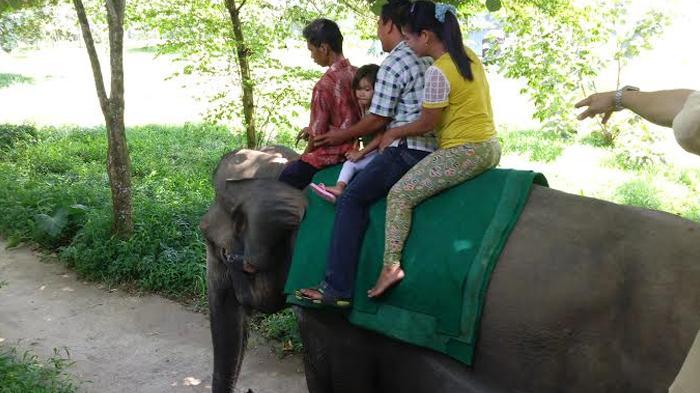 Wisata Tracking Jungle Kebun Binatang Medan Capek Tapi Puas Kota