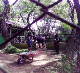Destinasi Wisata Keluarga Taman Mora Indah Tanjung Morawa Tempat Bukan