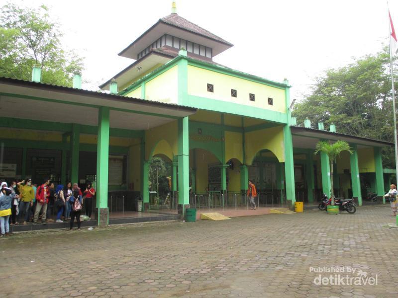 3 Tempat Melihat Aneka Hewan Medan Museum Galeri Satwa Internasional