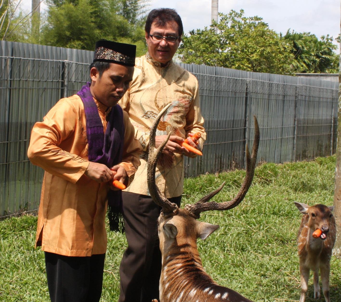 Medanbagus Ustad Maulana Kagumi Rahmat Gallery Museum Galeri Satwa Internasional