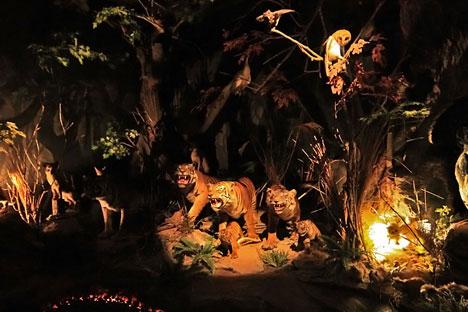 Museum Konservasi Satwa Indonesia Green Extinct Alamat Jl Letjen Parman