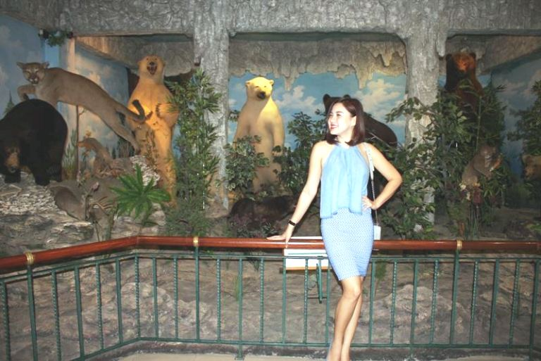 Rahmat International Wildlife Museum Gallery Wisata Edukasi Galeri Satwa Internasional