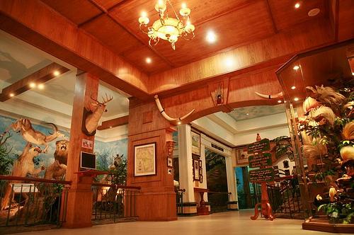 Rahmat Wildlife Museum Gallery Medan Indonesia Source Rahmatgallery Galeri Satwa