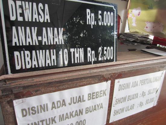 Harga Tiket Masuk Foto Taman Buaya Asam Kumbang Medan Tripadvisor