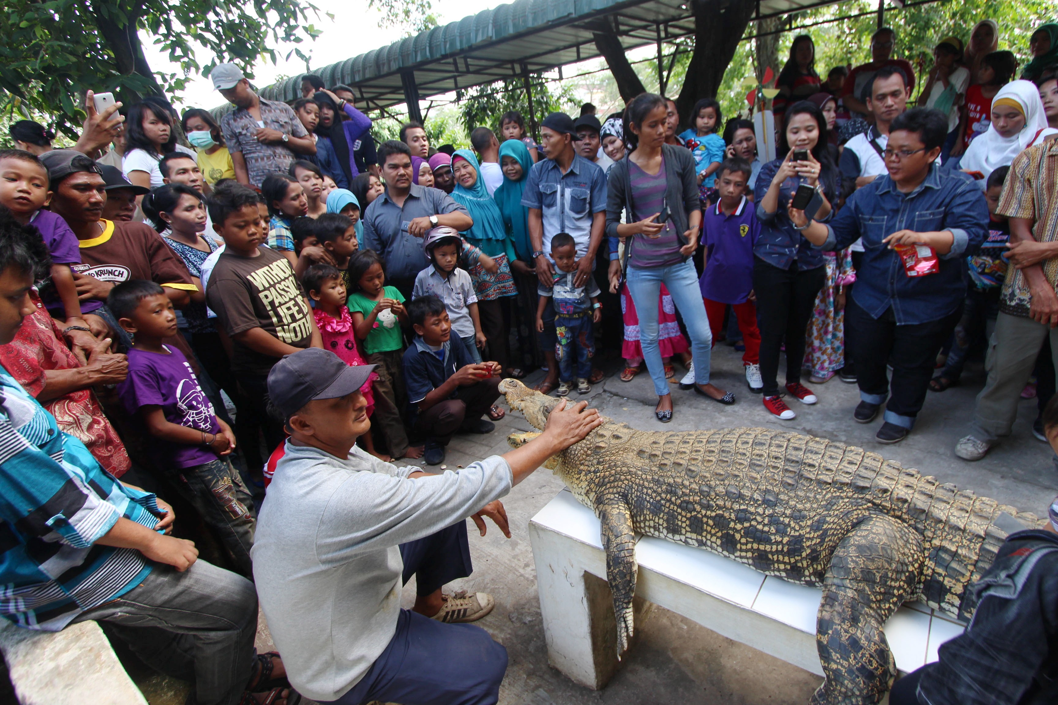 Taman Buaya Asam Kumbang Jadi Objek Wisata Lebaran Jurnal Asia