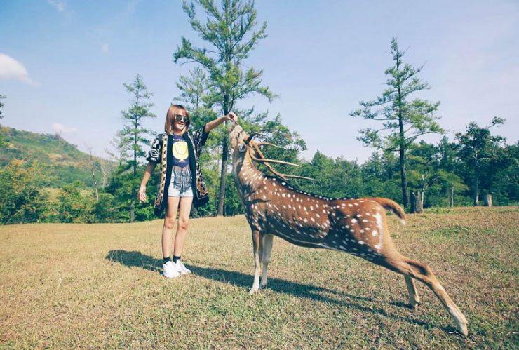 20 Tempat Wisata Anak Bogor Penuh Petualangan Keceriaan Photo Steffy