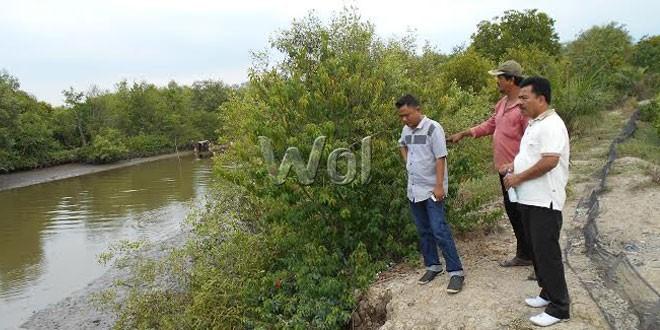 Camat Percut Sei Tuan Bangun Wisata Ekonomi Mangrove Waspada June