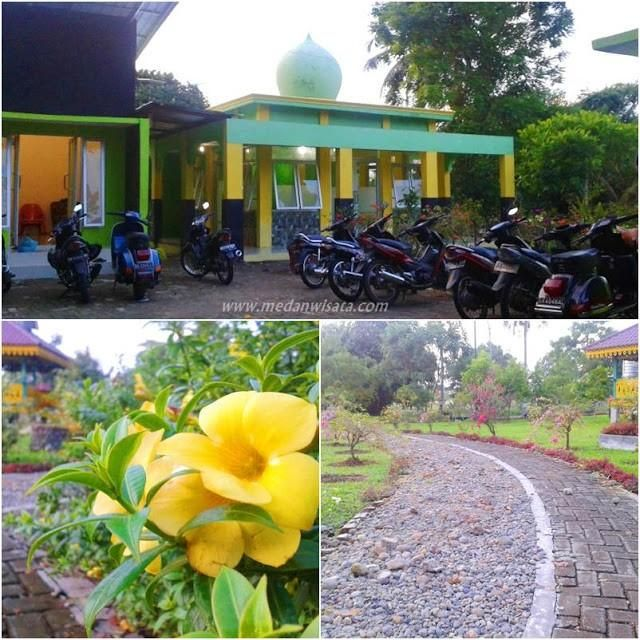 Dusk Taman Cadika Pramuka Medan Steemit Time Park Afternoon Coincidence