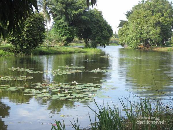 Menikmati Danau Mungil Taman Cadika Pramuka Medan Suasana Tenang Asri