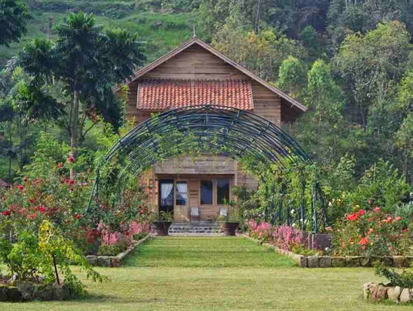 10 Taman Bunga Indah Eksotis Indonesia Part 2 Buku Tahu