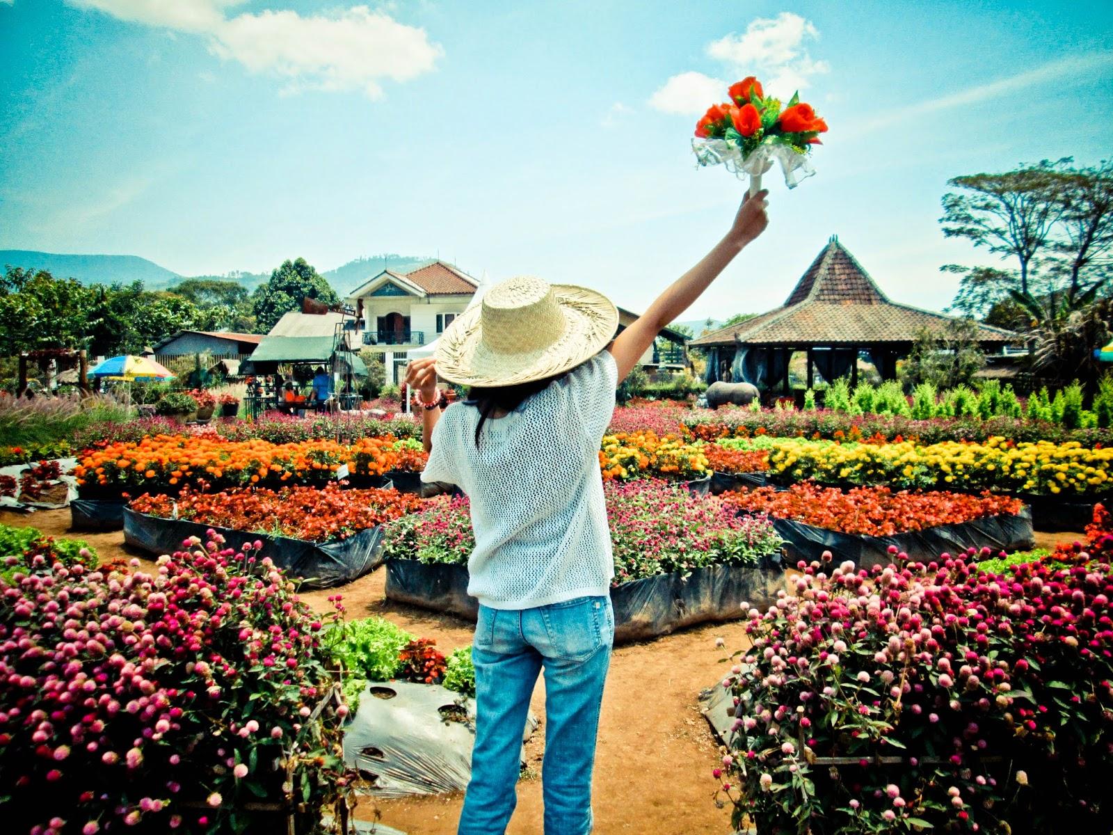 10 Taman Bunga Terindah Indonesia Layak Dikunjungi Travellink Kebun Kota
