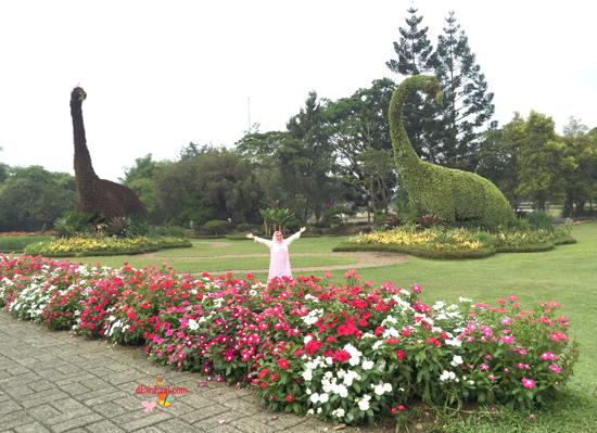 Dewie Enjoy Catata Pacaran Taman Bunga Nusantara Kebun Kota Medan