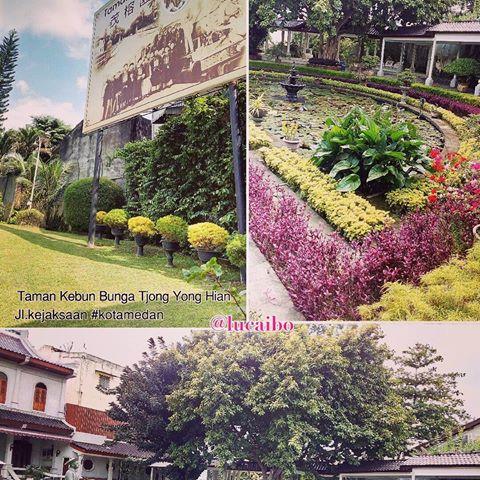 Images Tjongyonghian Tag Instagram Lucaibo Taman Kebun Bunga Kota Medan