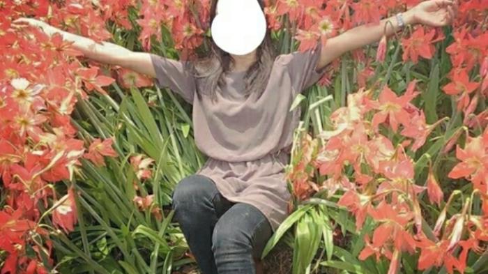 Kebun Lily Gunungkidul Rusak Terinjak Injak Komentar Pemiliknya Instagram Foto