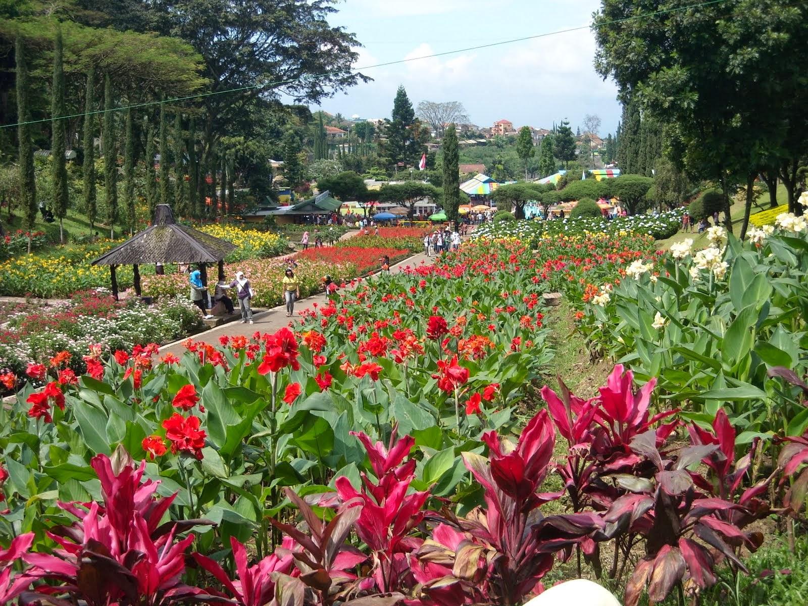 Menikmati Bandung Kota Kembang Kebun Bunga Cihideung Doyan Taman Medan