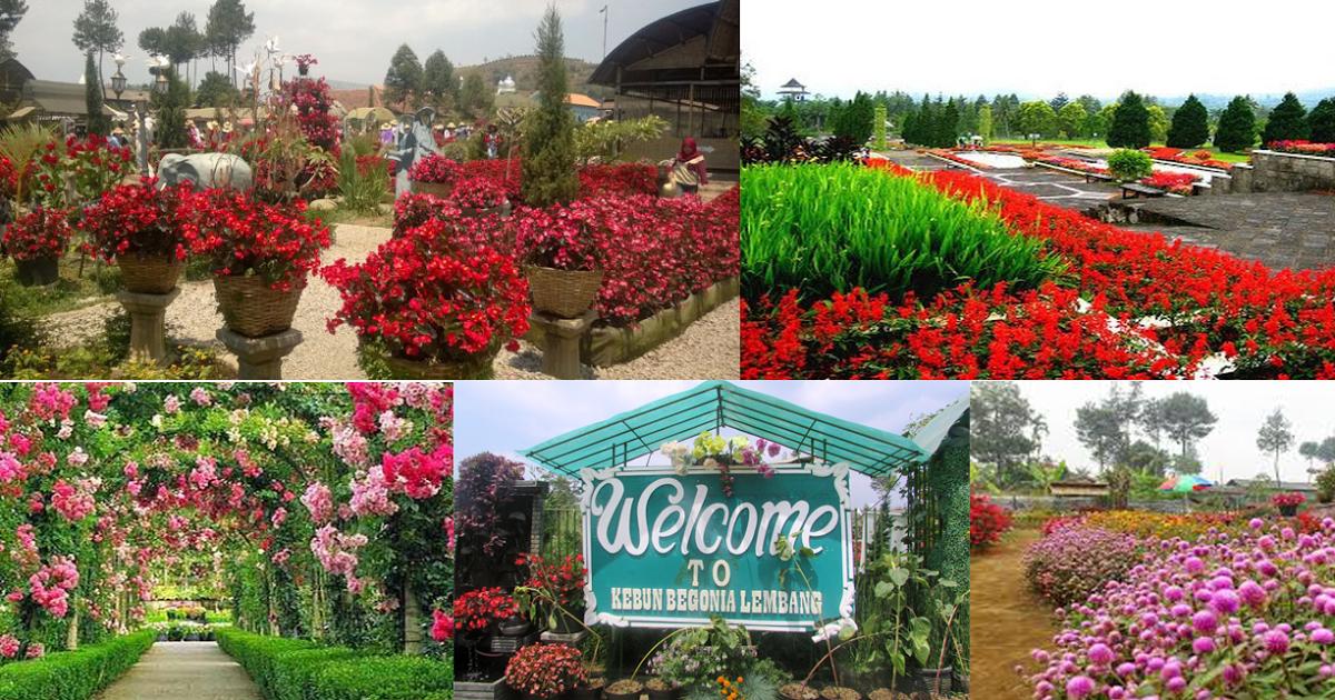 Objek Wisata Kebun Bunga Menarik Jalan Bandung 1 Taman Kota