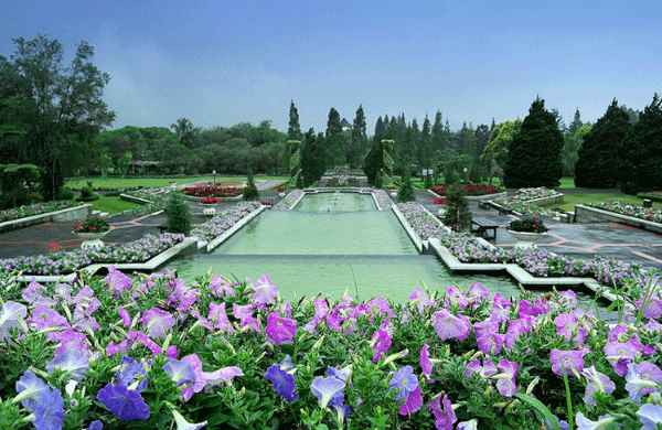 Taman Bunga Nusantara Tempat Jalan Romantis Kota Cianjur Spot Wisata