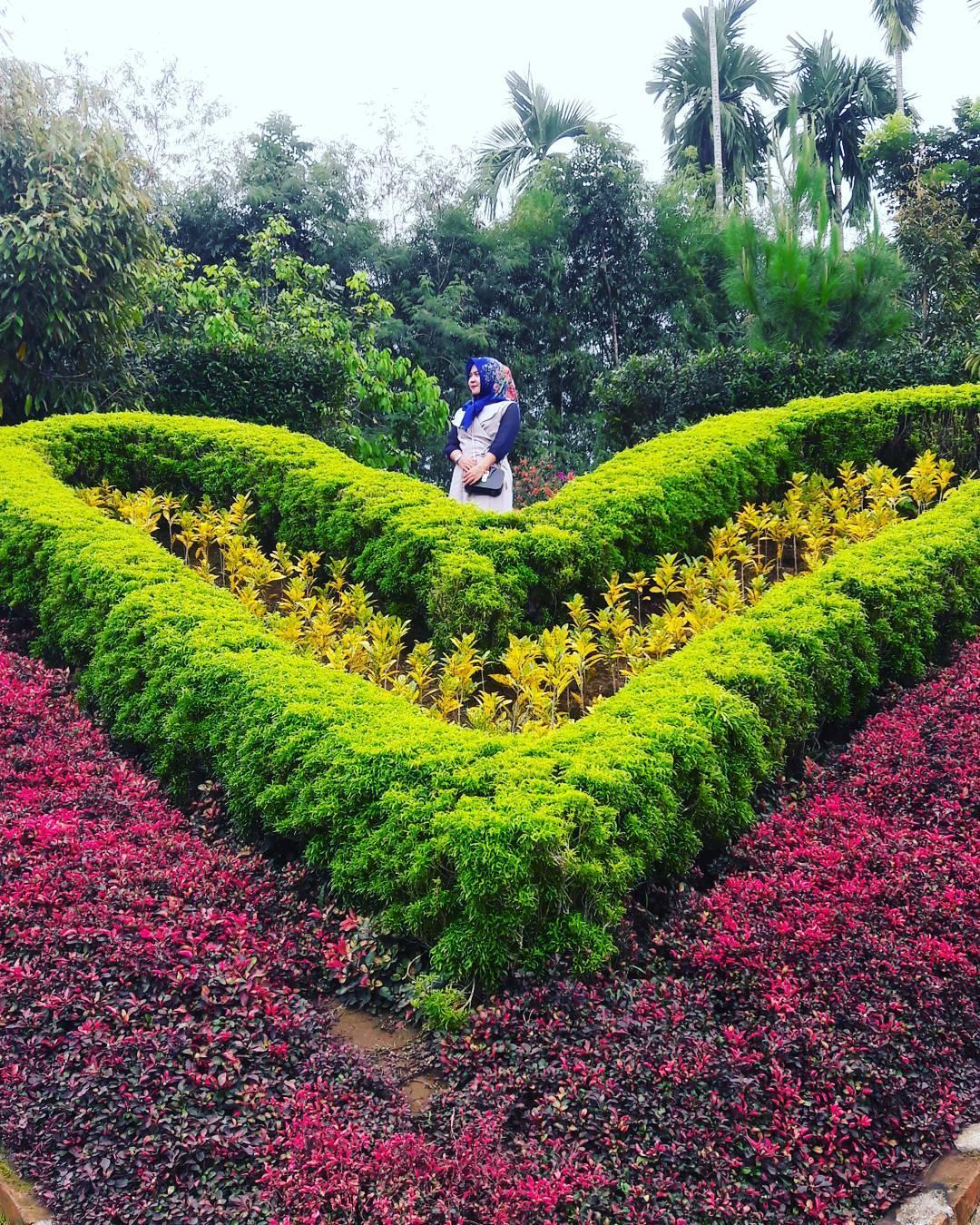 7 Spot Wisata Medan Ngehits Instagramworthy Taman Colorful Le Hu