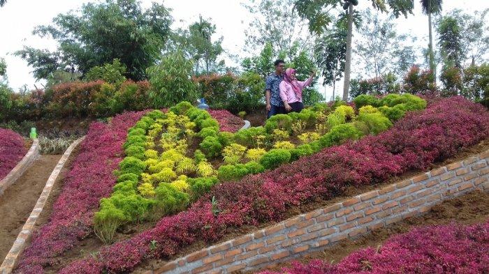 Asiknya Selfie Le Hu Garden Tribun Medan Taman Kota