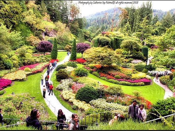 Le Hu Garden Swiss Belinn Medan Taman Kota