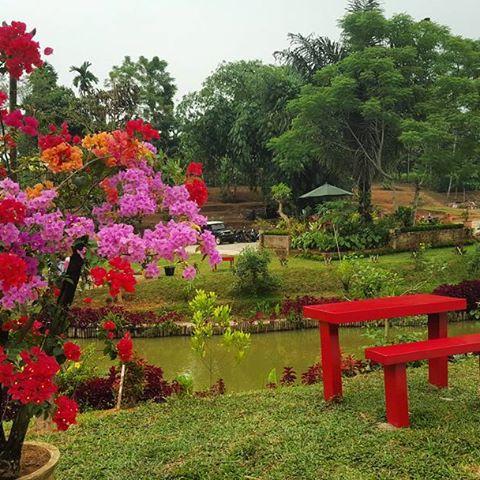 Wisata Le Hu Garden Sumatera Utara Medan Bisnis Yoyo Kita