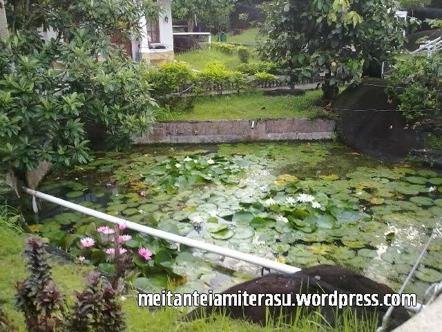 10 Tempat Objek Wisata Kota Padang H4nk Blogs Pemandian Lubuk