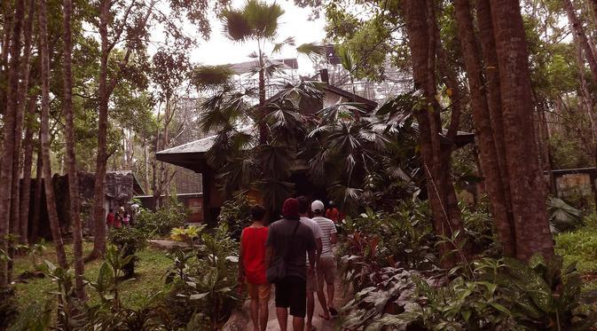 News Penangkaran Orangutan Bos Nyaru Menteng Palangkaraya Kalimantan Tengah Sumber