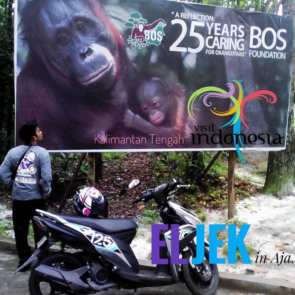 Tak Berkategori Laman 7 Eljek Palangka Raya Arboretum Nyaru Menteng