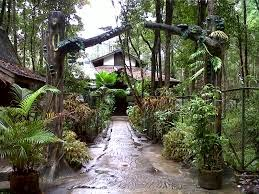 Wisata Borneo March 2015 Satu Tempat Palangkaraya Wajib Kunjungi Arboretum