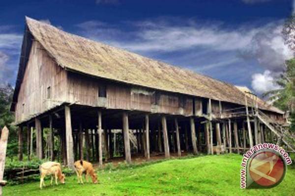 Huma Betang Simbol Kerukunan Warga Kalteng Antara News Kalimantan Rumah