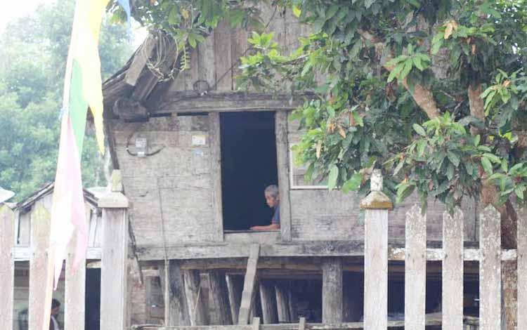 Pengecatan Tiang Betang Kalbar Rumah Adat Bentang Kota Palangkaraya
