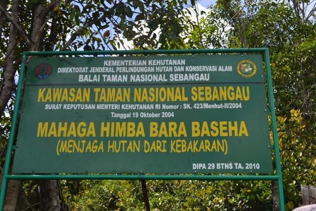 Cermin Taman Nasional Sebangau Kalimantan Tengah Backpacker Foto Pegipegi Mungkin