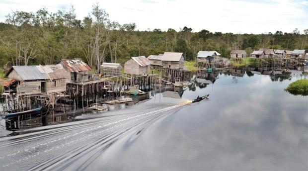 Menteri Siti Taman Nasional Sebangau Contoh Pengelolaan Gambut Sungai Kota